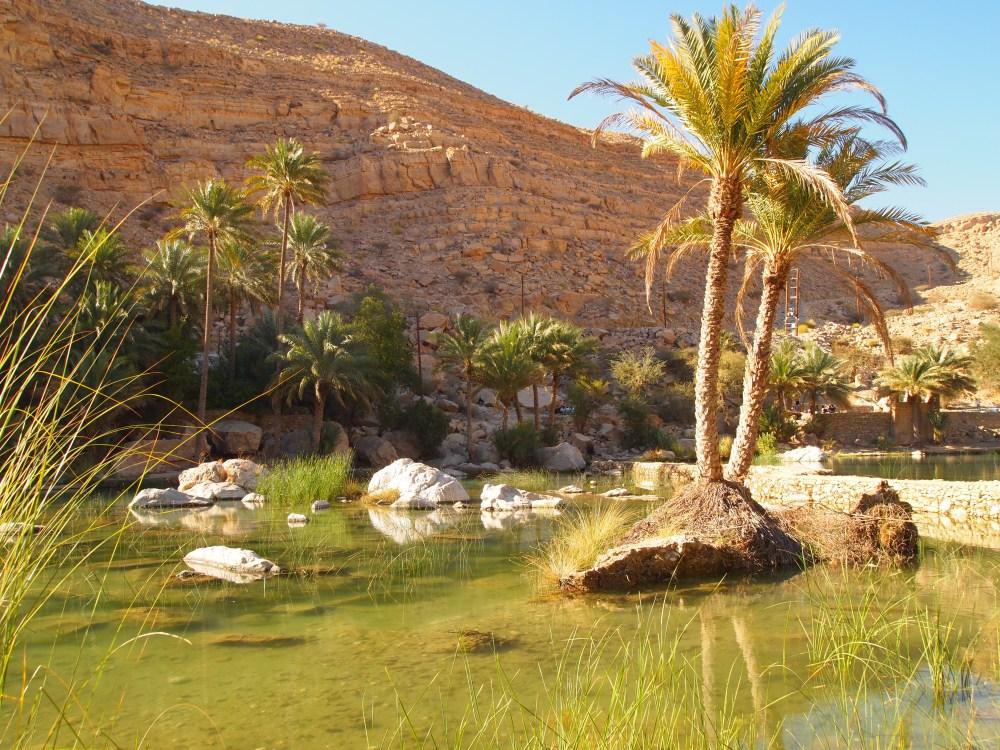 cliff leaping at wadi bani khalid (5/6)