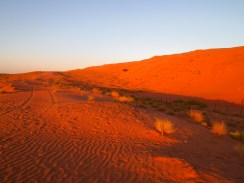 the Sharqiya Dunes at Al Areesh