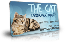 The Cat Language Bible: Read & Reviewed 2