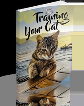 the cat language bible