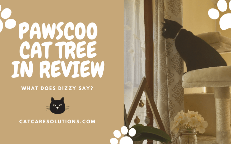 pawscoo cat tree review