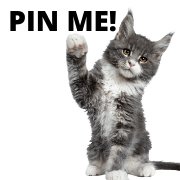 cat care solutions pin me