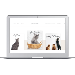 cat care newsletter