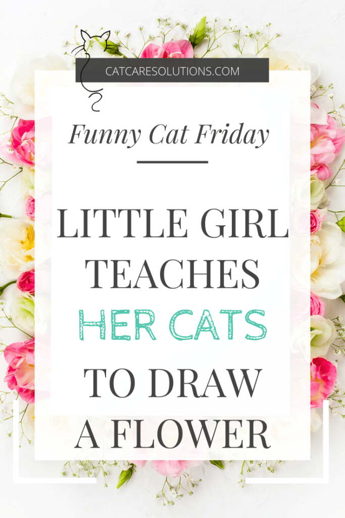 Pinterest image for Funny Cat Friday: Little Girl teaches her cats to draw a flower