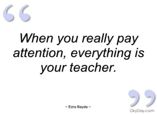 3695714-pay-attention-quotes-and-sayings