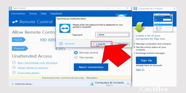 enter team viewer password