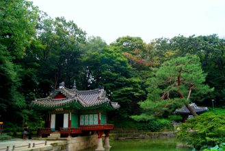 Secret Garden : South Korea, Seoul