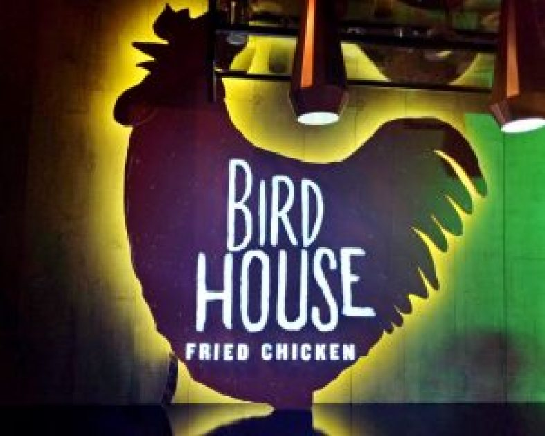 Birdhouse PH: The Lord of the Wings | catchingcarla.com