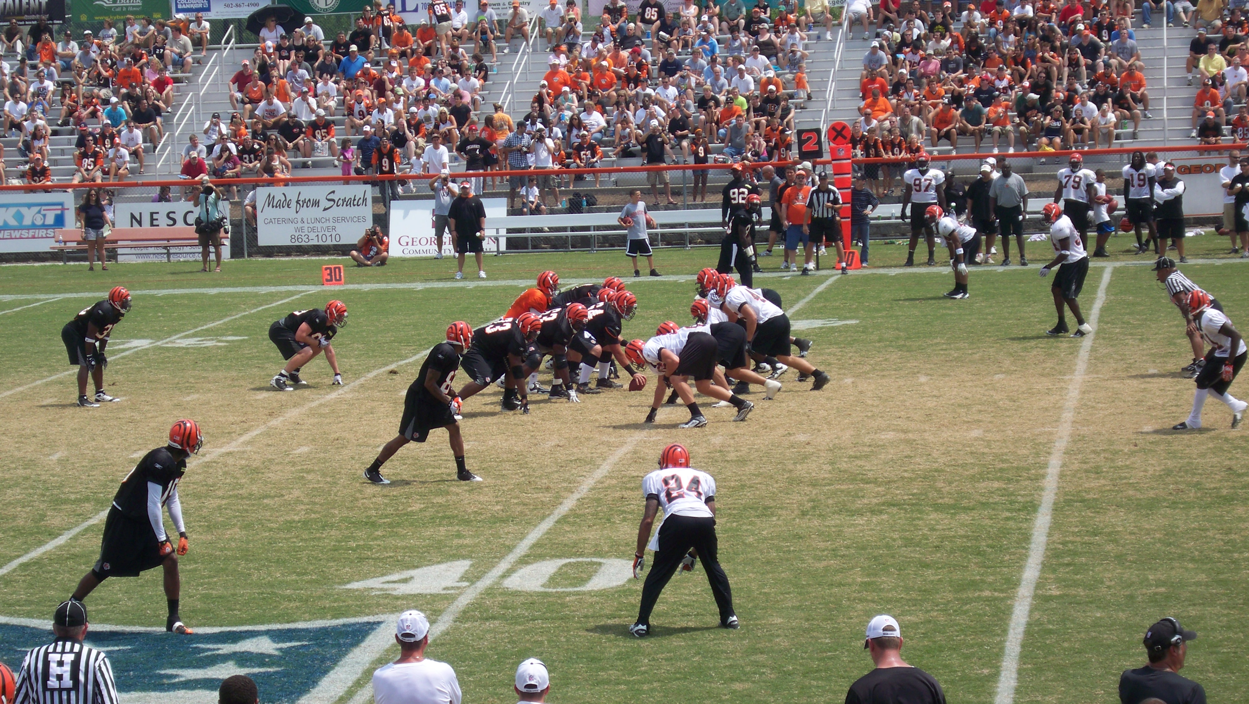 Summer workout: The Bengals in training camp, where every move was followed by the cameras...