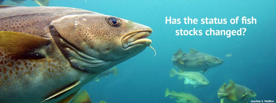 https://i0.wp.com/catchshareindicators.org/wp-content/uploads/2012/11/fish-stocks.jpg