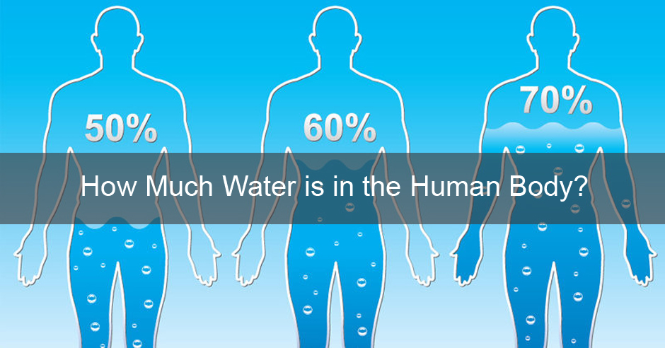 How Much Water is in the Human Body? Image Source: David Wolfe
