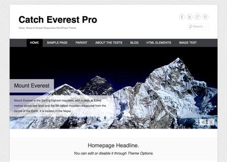 Catch Everest Pro