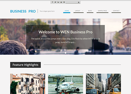 Web Business Pro