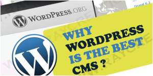 use wordpress for making website