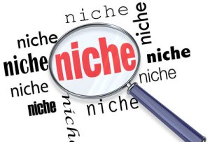 Why I Converted My Multi Niche Blog To Single Niche Blog ?