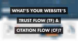 Majestic Trust Flow And Citation Flow – What's The Difference?
