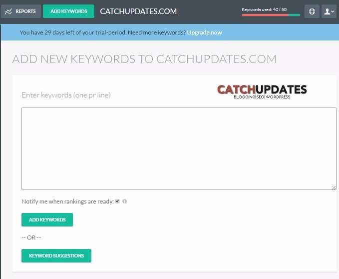 tiny ranker review adding new keywords