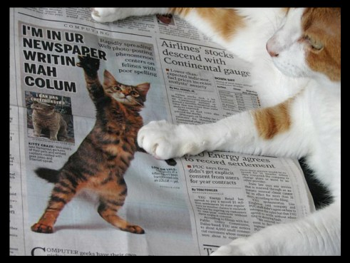 The Demise of the Newspaper