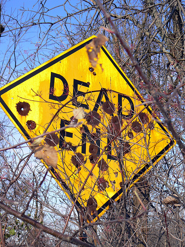 """~Easy to see why it's a """"Dead End""""~"""