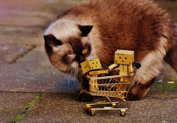 Shopping Cart Shopping Cat Figures Curious Danbo