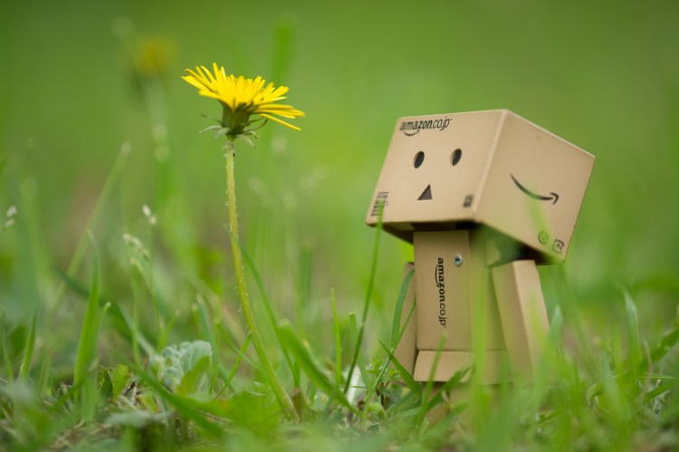Danbo_and_Dandelion_(8727612532)