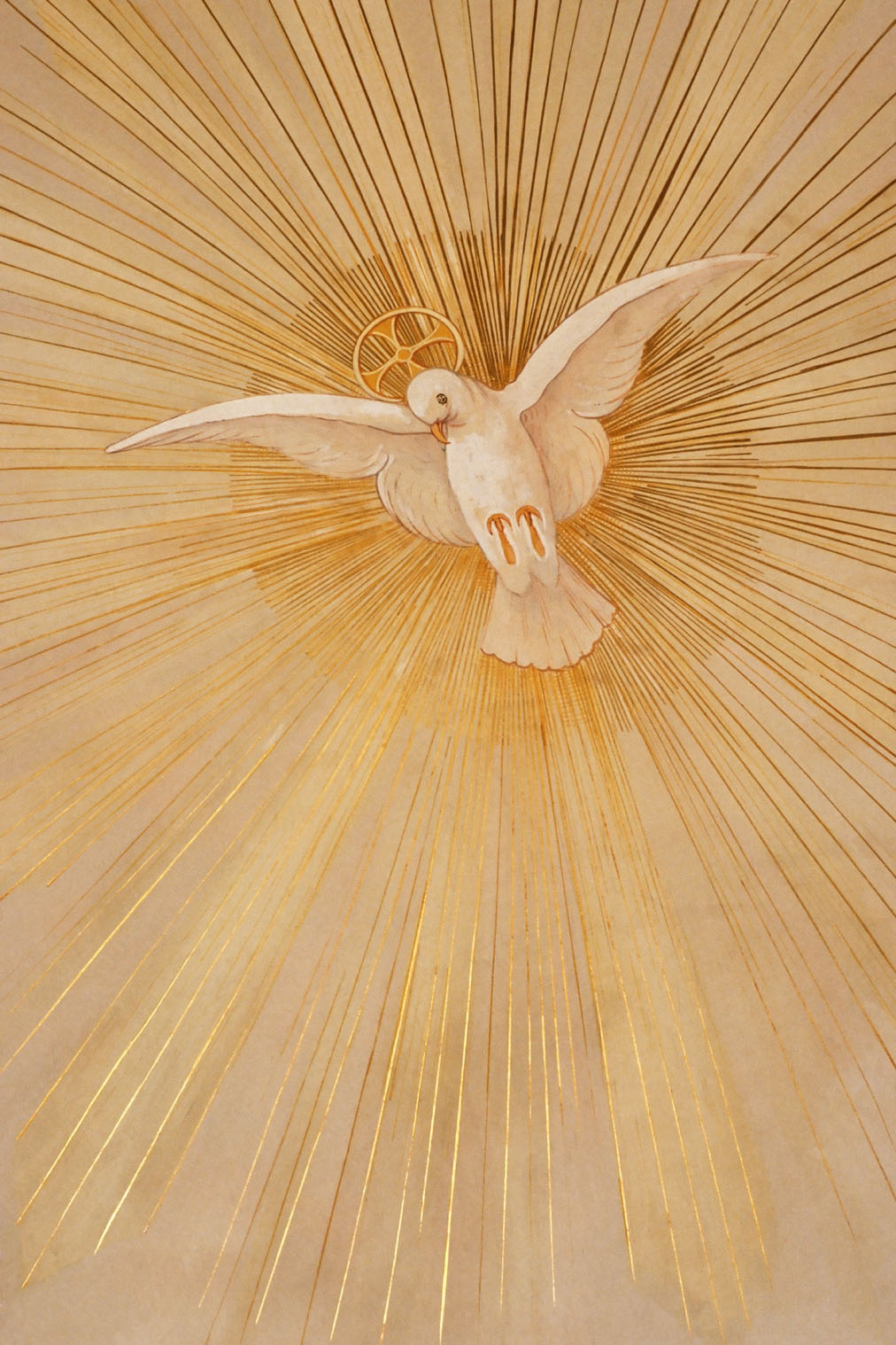 hight resolution of Post-Confirmation Reflection - Catechist's Journey