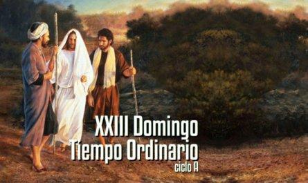 XXIII Domingo del Tiempo Ordinario A
