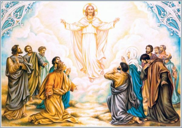 Homilía VII Domingo de Pascua – La Ascensión del Señor