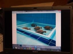 Arqueología subacuática 6