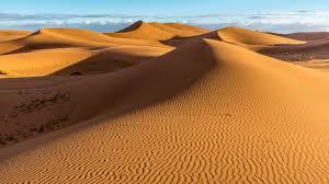 Experiencia de desierto