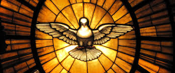 Este año hablaremos de la Divina Revelación