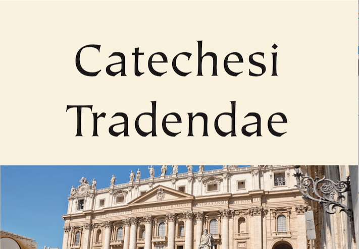"""Para trabajar en grupos con la ponencia de JC Carvajal sobre """"Catechesi Tradendae"""""""