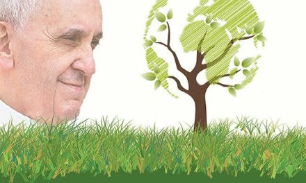 Boletín de Justicia y Paz diocesana de Madrid con el informe de Cáritas Española sobre el trabajo de este año