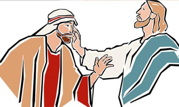 Audio-Evangelio Domingo XXIII del Tiempo Ordinario