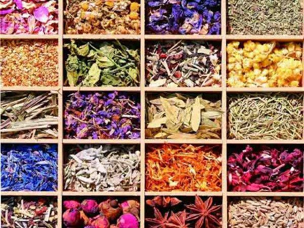 Il colore e il profumo delle Spezie