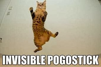 Invisible Cat Stuff  Caterville