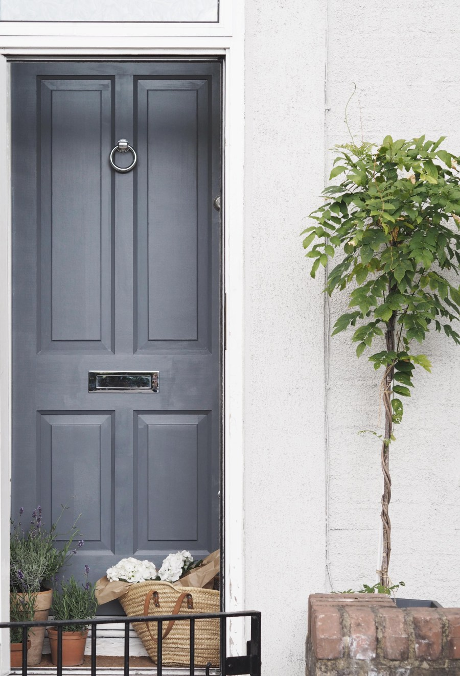 A wisteria will slowly grow over the frame to give a wonderful green entrance
