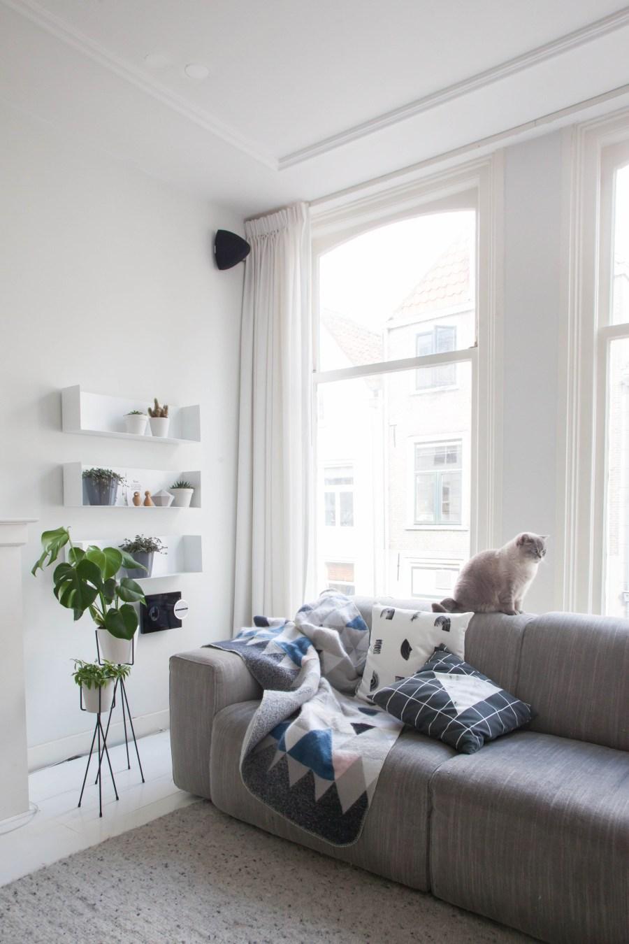 Studio LileSadi - minimalist design