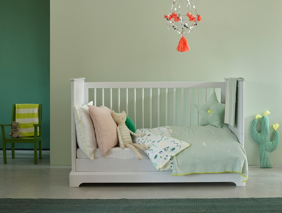 Tips for choosing the right paint for your project with Earthborn paints - Sapling by Earthborn