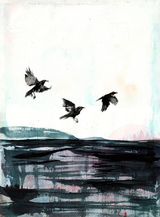crows_water_72