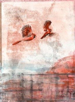 11-29-16_Cardinal_BG