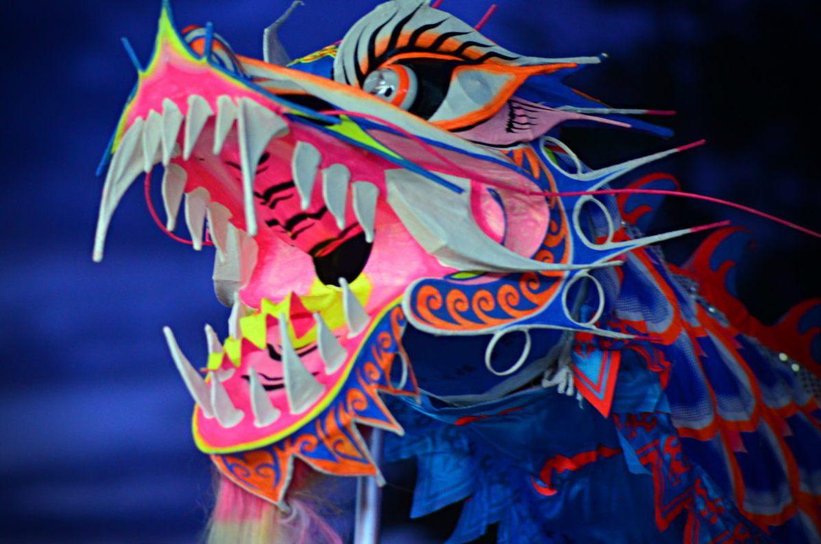 DSC_1053_v2 lam tu luan kungfu Chinese New Year 2015 with Lam Tu Luan Kungfu DSC 1053 v2