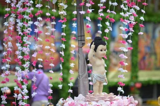DSC_0731 buddha birth day Buddha Birth Day Festival 2015 DSC 0731