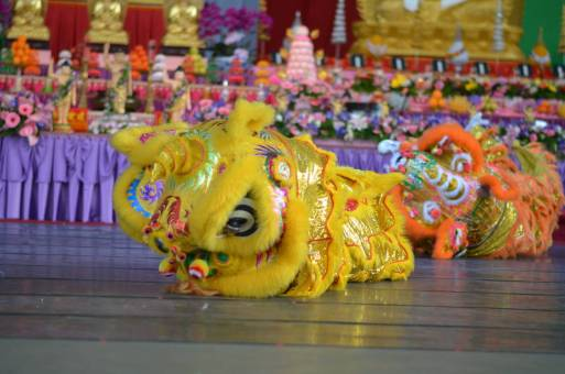 DSC_0989 buddha birth day Buddha Birth Day Festival 2015 DSC 0989