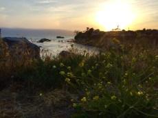 Sunset view. Pismo Beach, CA, May 2016