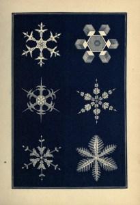 graphisme-illustration-flocon-neige-13-628x920