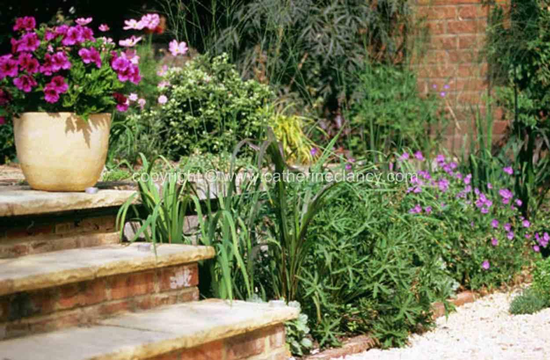 blackheath-walled-garden-steps
