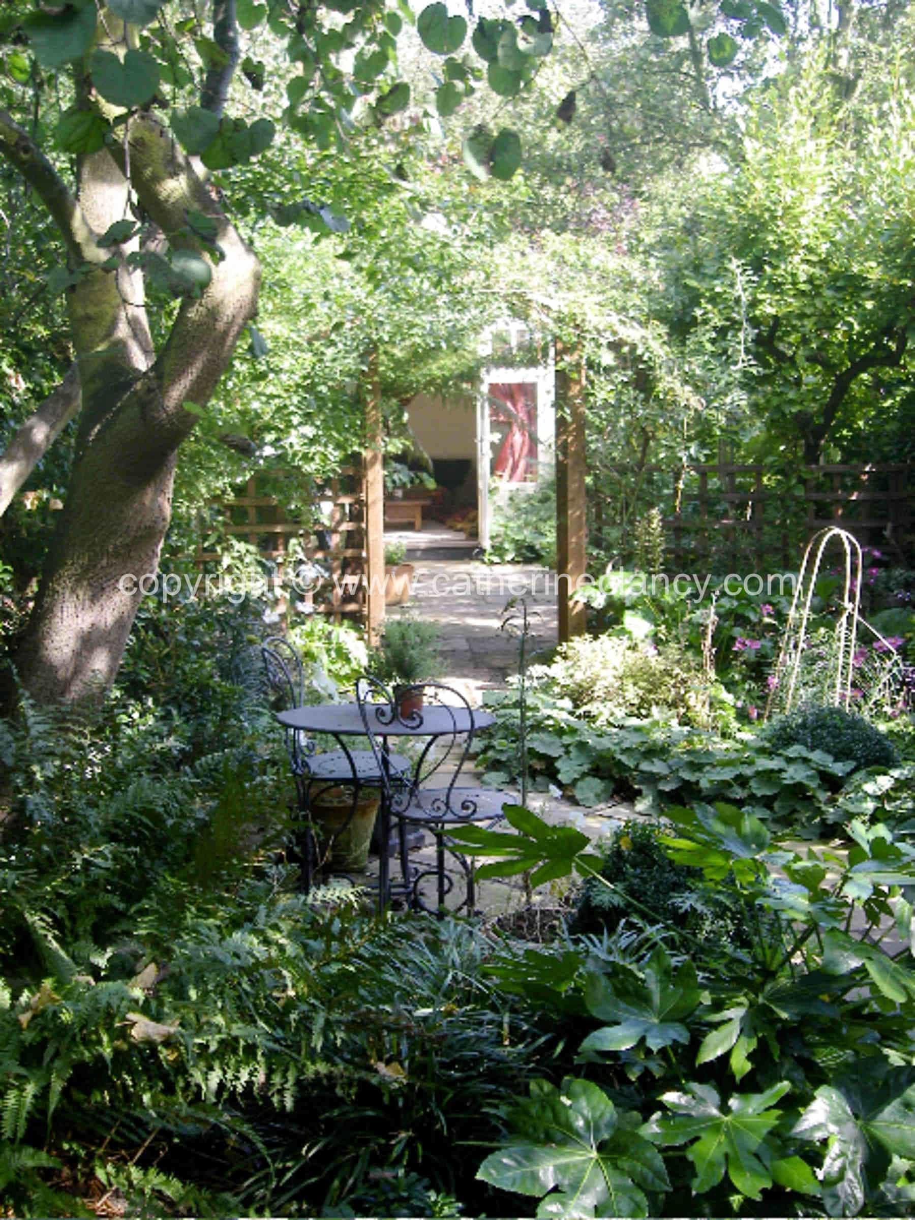 chiswick secret garden garden design london catherine clancy