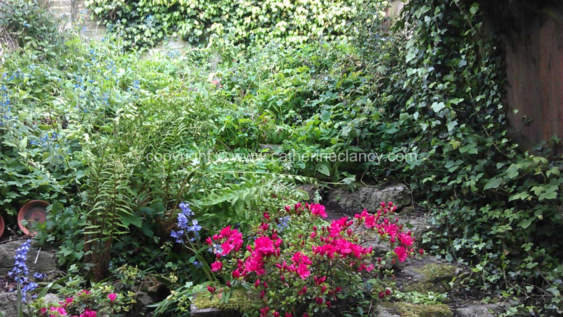 greenwich-terraced-garden-5