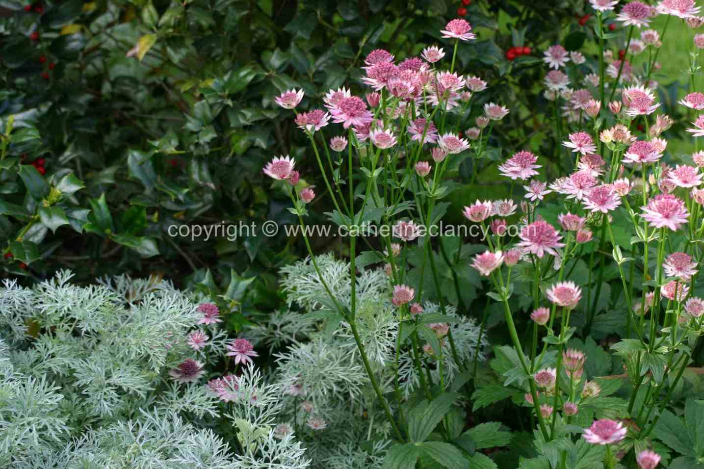 historic-riverside-garden-7